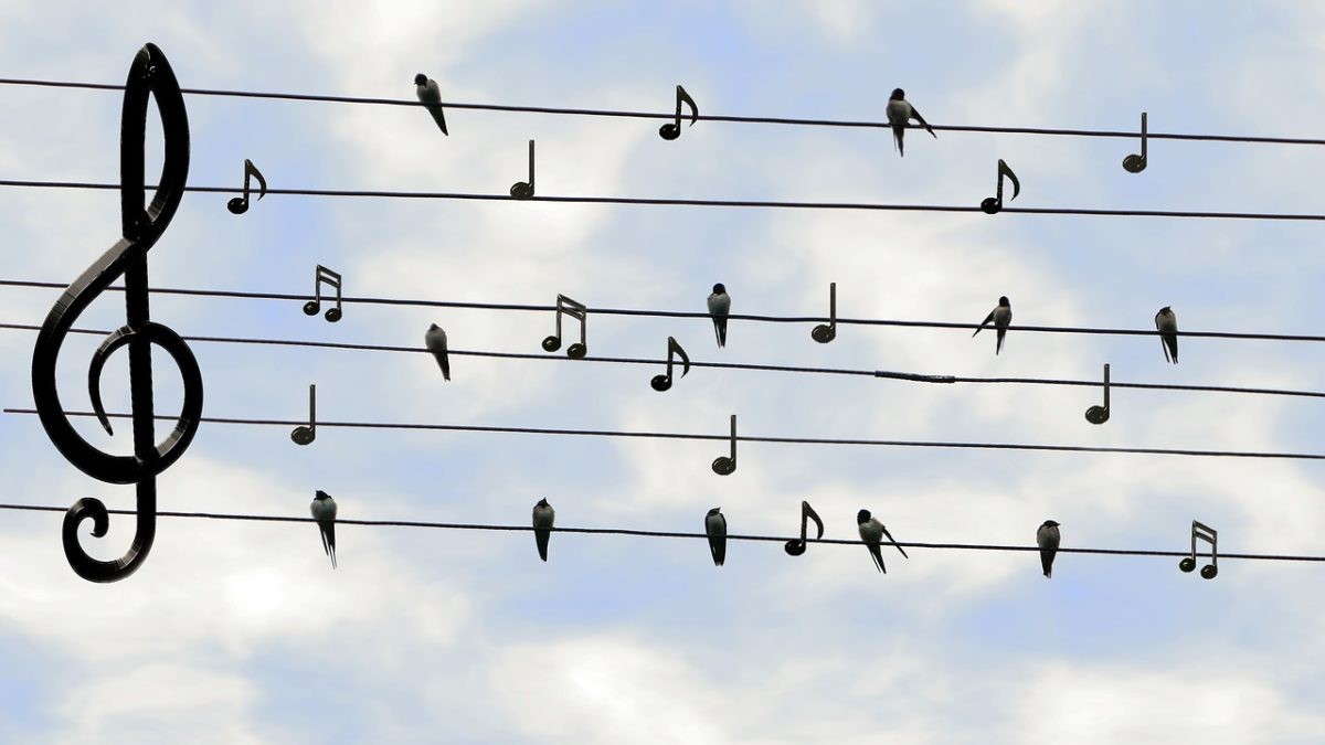 Musikpädagogik Studium